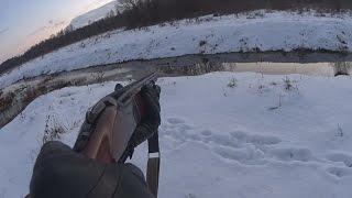 Охота на бобра зимой с ружьем