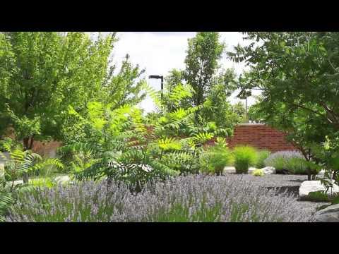 alumni us spokane community college spokane washington area