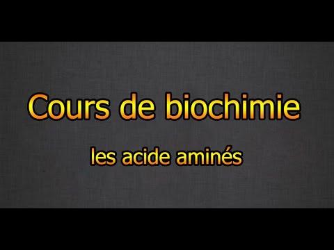 Biochimie cours : Les acides aminés