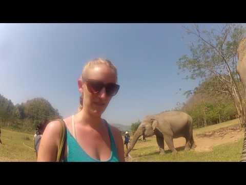 Thailand Elephant Nature Park Pamper a Pachyderm Part 1