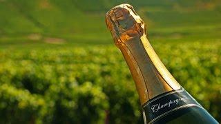 La Route Des Vins - Champagne
