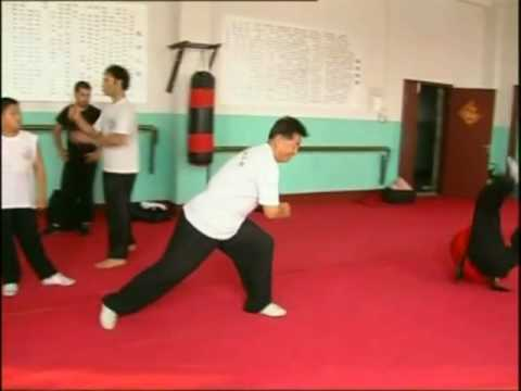 Yantai TV interview to Seven-Star Mantis Kung Fu Research Institute Italy