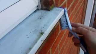 Repeat youtube video Window Sill Clean using AlgiCleanze