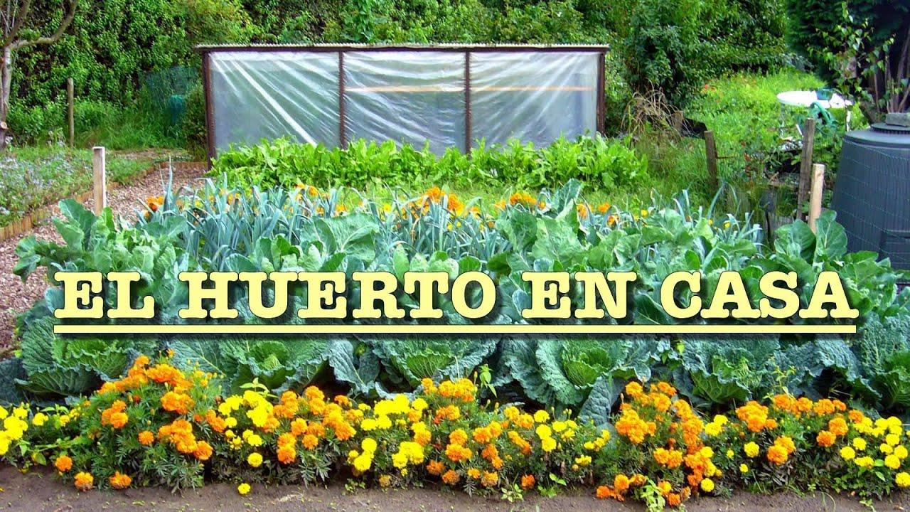 Video curso huerta organica youtube for Plantas para huerta organica