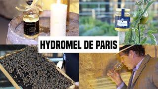 Hydromel de Paris - des ruches sur les toits jusqu'aux fûts dans les catacombes