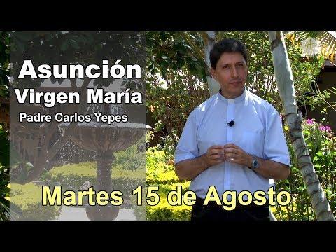 Solemnidad de la Asunción de la Virgen María   Reflexión Padre Carlos Yepes