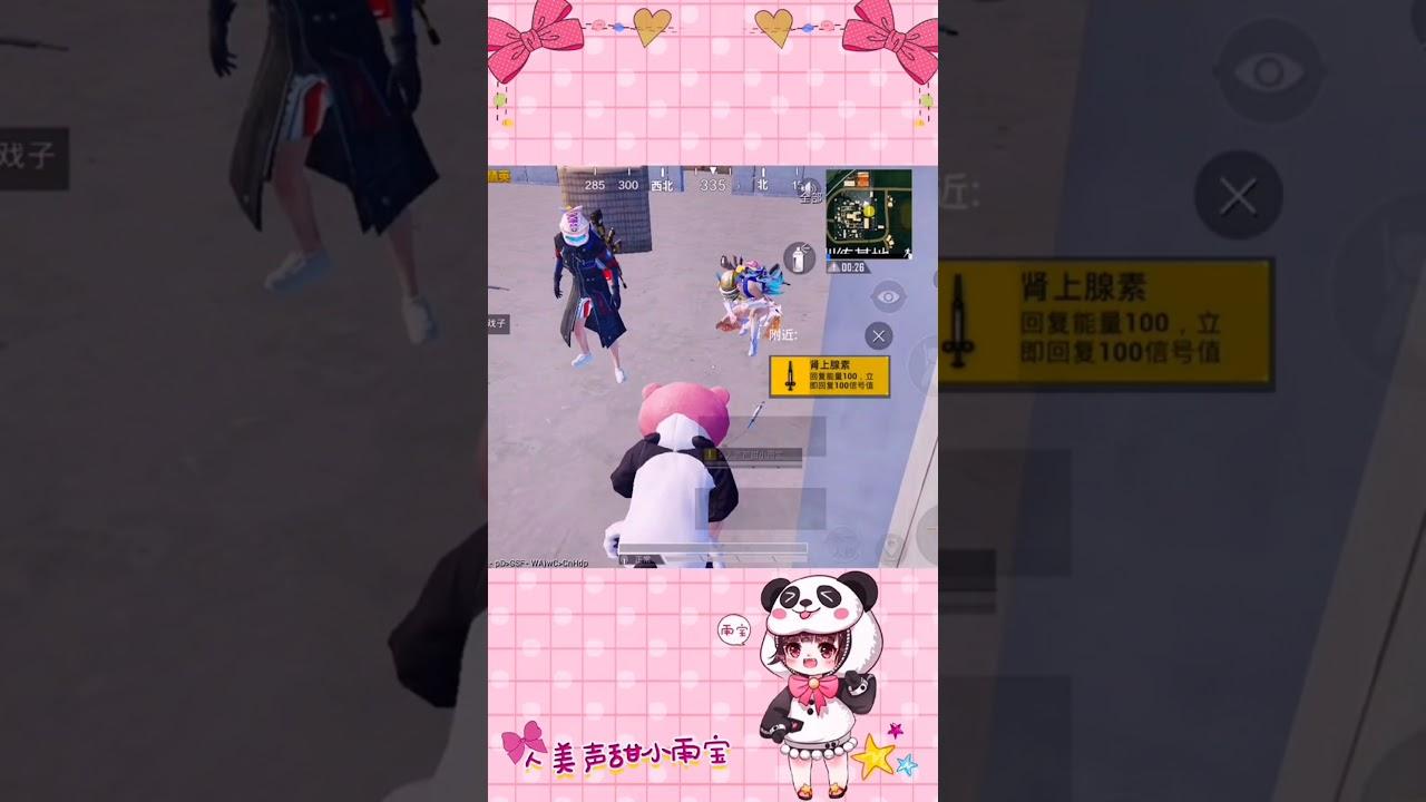 Có 1 kiểu con gái chơi game chỉ để tìm gái =))) - Team up cute lắm chứ bộ [PUBG Vietsub]