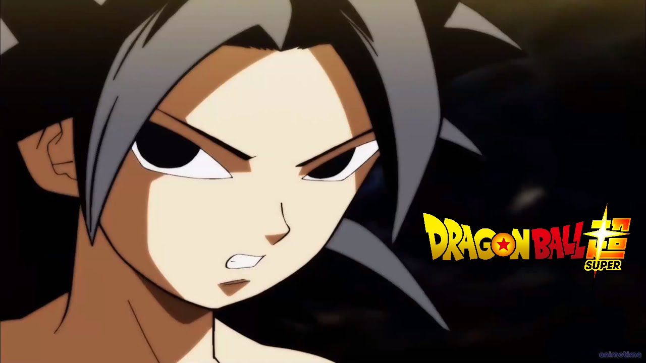 Dragonball Super 96