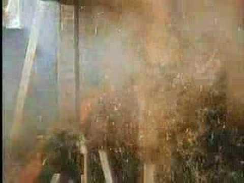Trailer do filme O Trapalhão na Arca de Noé