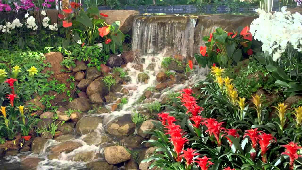 Jardines de m xico tu jard n para boda destino youtube for Los jardines de arbesu
