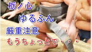 井筒親方 栃ノ心ゆるふん 厳重注意 過去の処分は? <大相撲初場所>◇4...