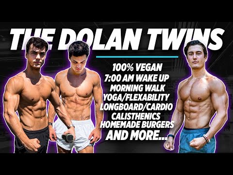 I TRIED THE DOLAN TWINS DIET AND TRAINING FOR 24 HOURS CHALLENGE... (ft. Ethan & Grayson)