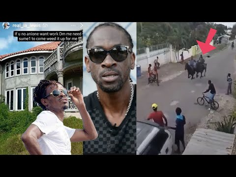 Bounty PlS$ED 0FF By This | Horse Racing On ROAD In JA Community| Big Party In Jamaica For Tourist