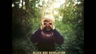 The Black Box Revelation-My Perception