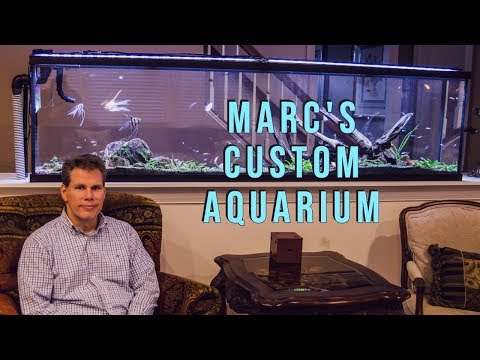 Marc's Custom Aquarium