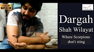 Documentary on Dargah Shah Wilayat - Where scorpions don't sting!