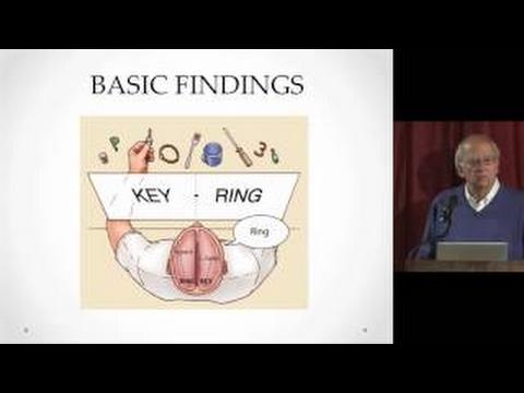 Cerveau, Culture et Société