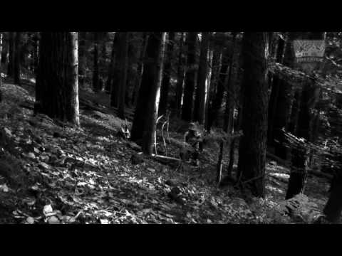 MTB-Freeride TV - Folge 25 - Downhill Training mit Marcus Klausmann in Baar, Elsass