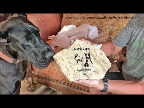 Emotional Tribute to Max and Katie the Great Dane's Memorial Gifts and Cards