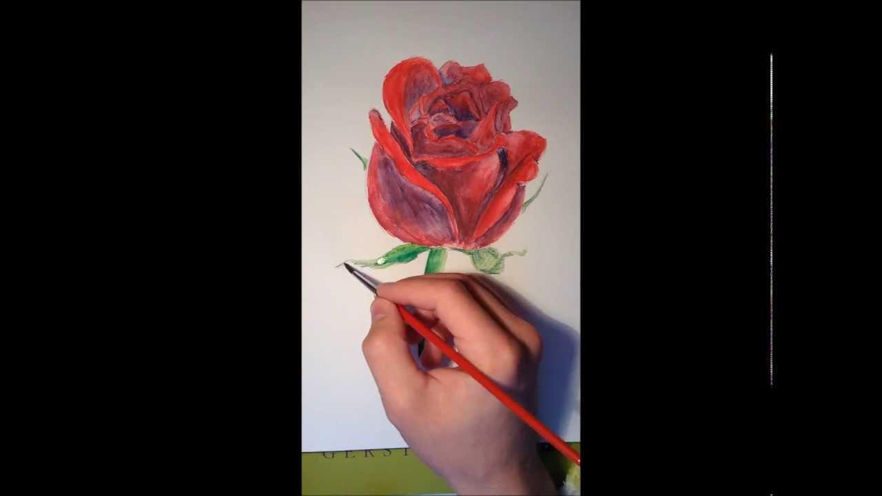 leicht malen lernen