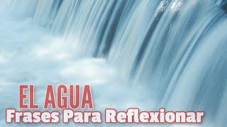 Dia Del Agua Frases Para Reflexionar
