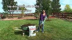 Fall Tips - Fall Lawn Care
