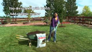Fall Tips - Fall Lawn Care