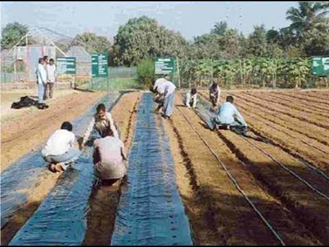 modern farming techniques in india