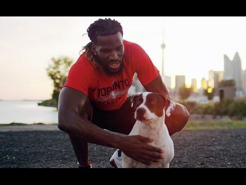 Toronto Humane Society Adoption PSA