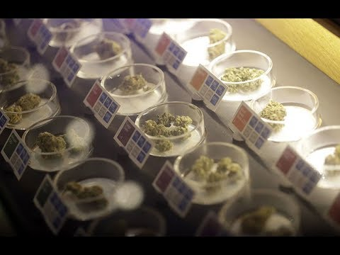 Legal Recreational Weed In California Starts Today