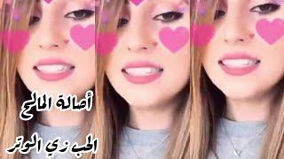 الحب زي الوتر بصوت أصالة المالح الفديو الاصلي للاغنية