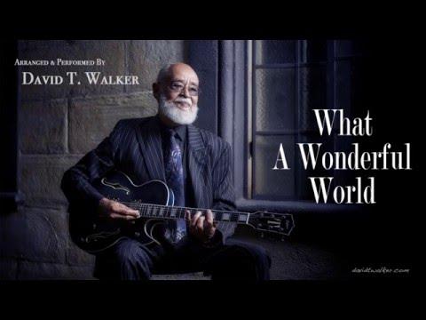 David T. Walker - What A Wonderful World