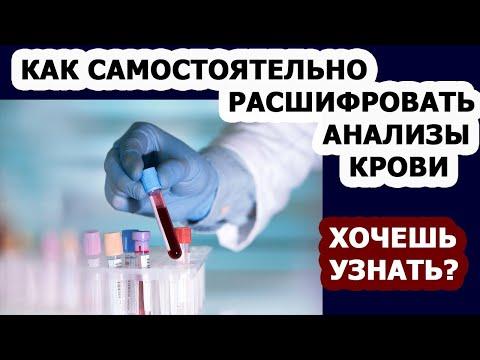 Общий анализ крови. Биохимический анализ крови. Расшифровка анализа