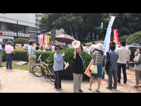 Japanese Protest Constitutional Reforms