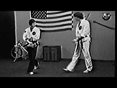 Shaolin Kempo Karate Kung-Fu Jiu Jitsu - 40 Year Retrospect - Jim Brassard