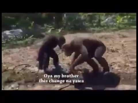 zoo republic of nigeria