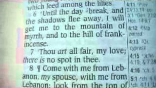 Song Of Solomon 4 Holy Bible (King James)