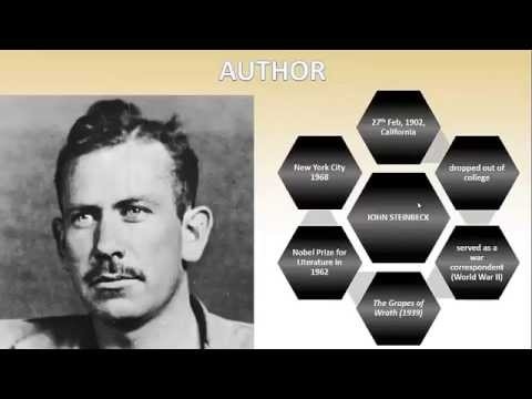 flight by john steinbeck short summary