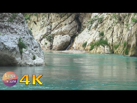 Relaxing river scenery - Calming nature sounds - Gentle running water and bird song - 4K video