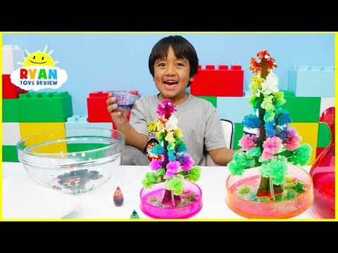 Ryan tries Magic Tree Crystal Science Experiment for kids to do at home!!!