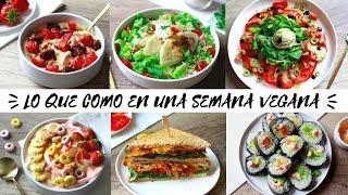 LO QUE COMO EN UNA SEMANA   Vegano & Saludable
