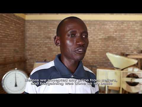 #SocialAcc in Agriculture - Interview w/ representative of a farmers' cooperative in Rwanda