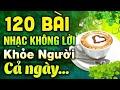 120 Bài Nhạc Không Lời Buổi Sáng Khỏe Người Cả Ngày   Hòa Tấu Rumba Không Lời   Nhạc Phòng Trà 2021