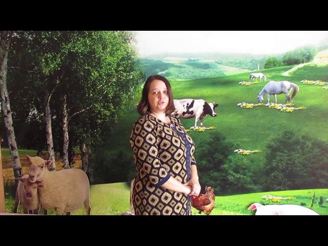 Изображение предпросмотра прочтения – ОльгаЦыренова читает произведение «Упоение - яд отравы» С.А.Есенина