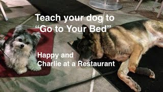 "How To Teach Your Dog ""go To Your Bed"" ""place"" Command"
