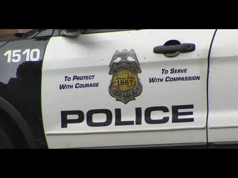 Minneapolis Police Budget Cuts
