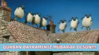 Песенка Баранчик шоу