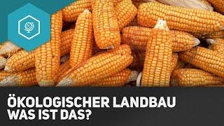 Ökologischer Landbau - Was ist das?