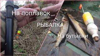 Щука на бутылки крокодилы на удочку РЫБАЛКА в октябре Ветер Северный