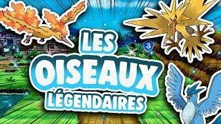 ✨LES OISEAUX LÉGENDAIRES✨ - La Chronique Des Légendes #2